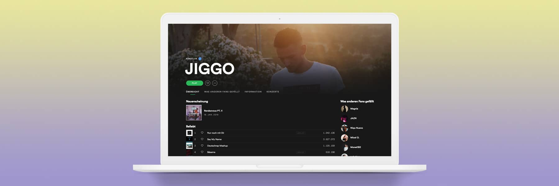 Falsches Spotify-Profil